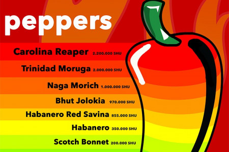 Can you guess the 10 hottest chili peppers in the World?  Infographic