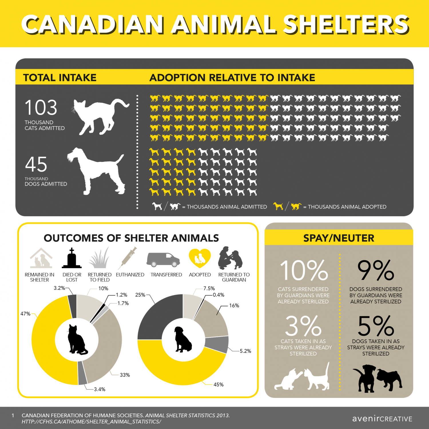 Canadian Animal Shelters Infographic