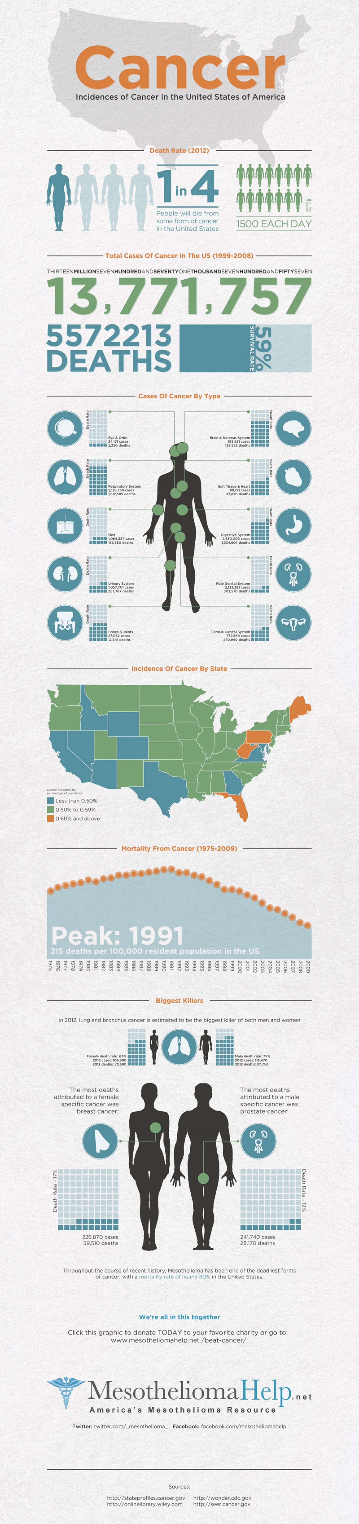 Cancer Awareness Infographic Infographic