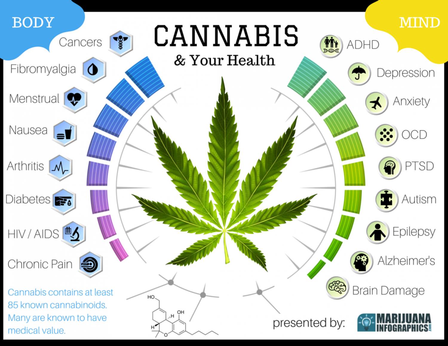 Cannabis and Your Health Infographic