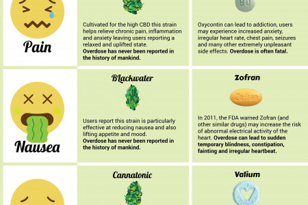 Cannabis Vs Pills Infographic