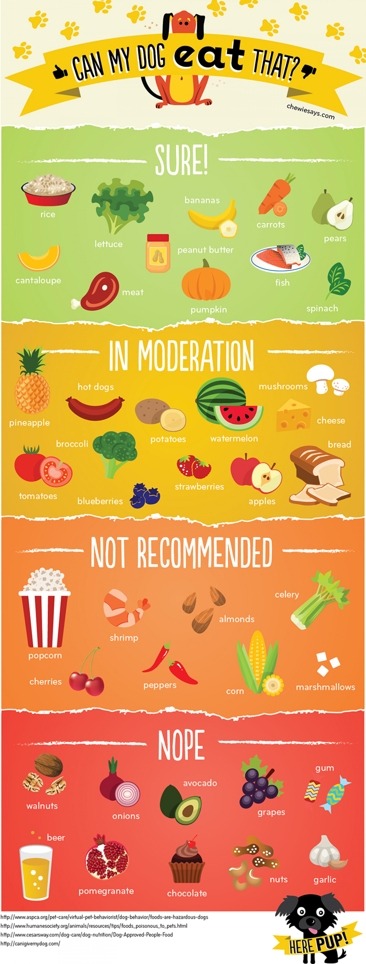 Cant My Dog Eat That? Infographic