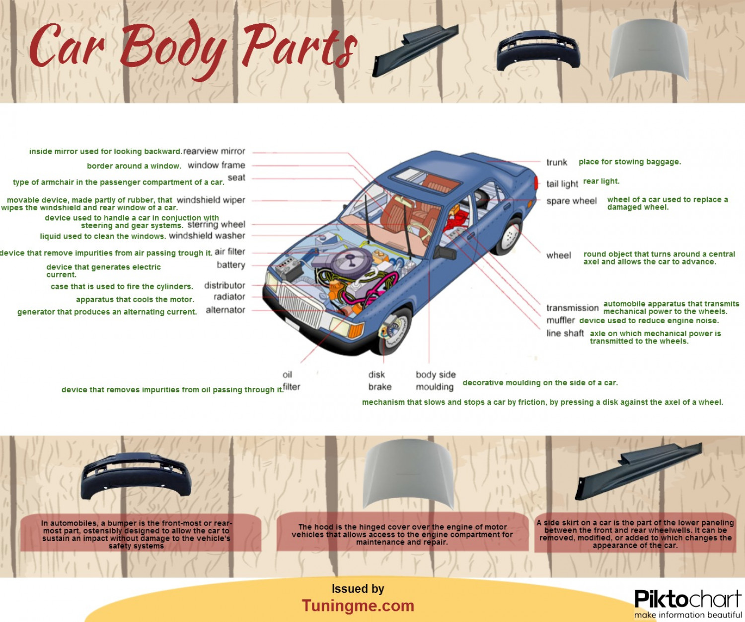 Car Body Parts Visual Ly