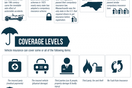Car Insurance History Infographic