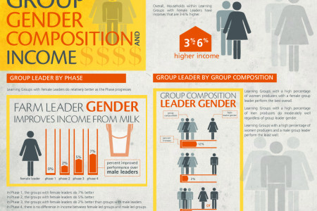 CARE Bangladesh SDVC Group Gender Infographic