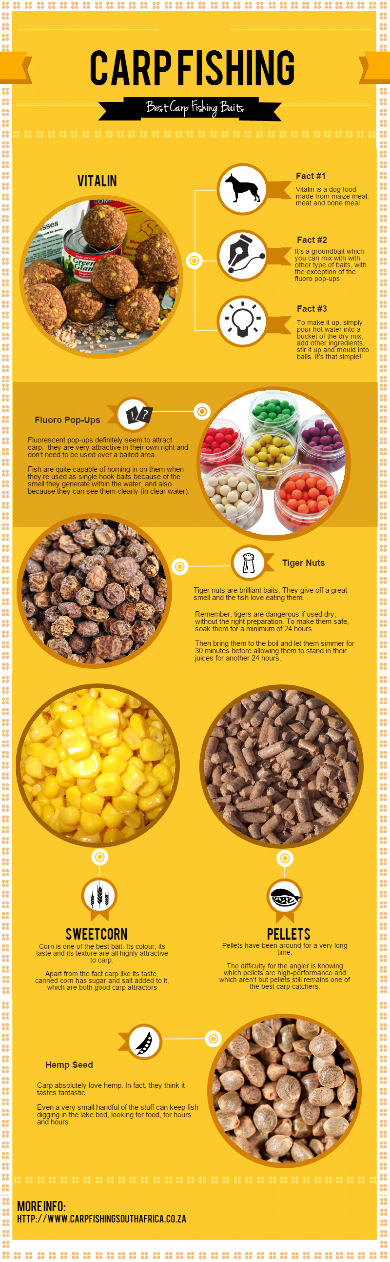 Carp Fishing - Best Carp Fishing Baits Infographic