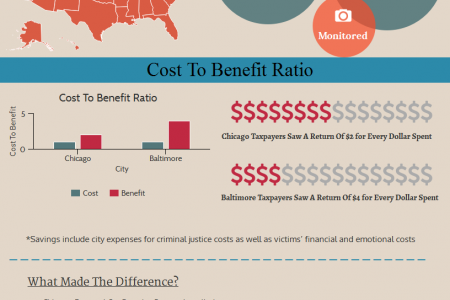 Case Study: Cost To Benefit Ratio Infographic