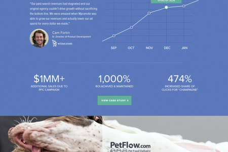Case Study Landing Page Infographic