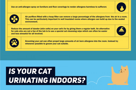 Cat Owners Survival Guide Infographic