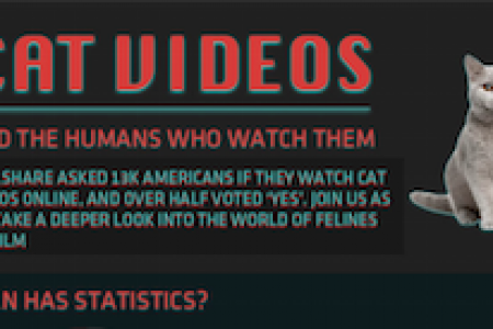 Cat Videos and the Humans who Watch Them Infographic