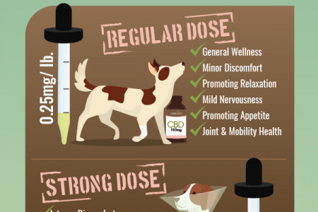 CBD Dosage for Pets Revealed Infographic