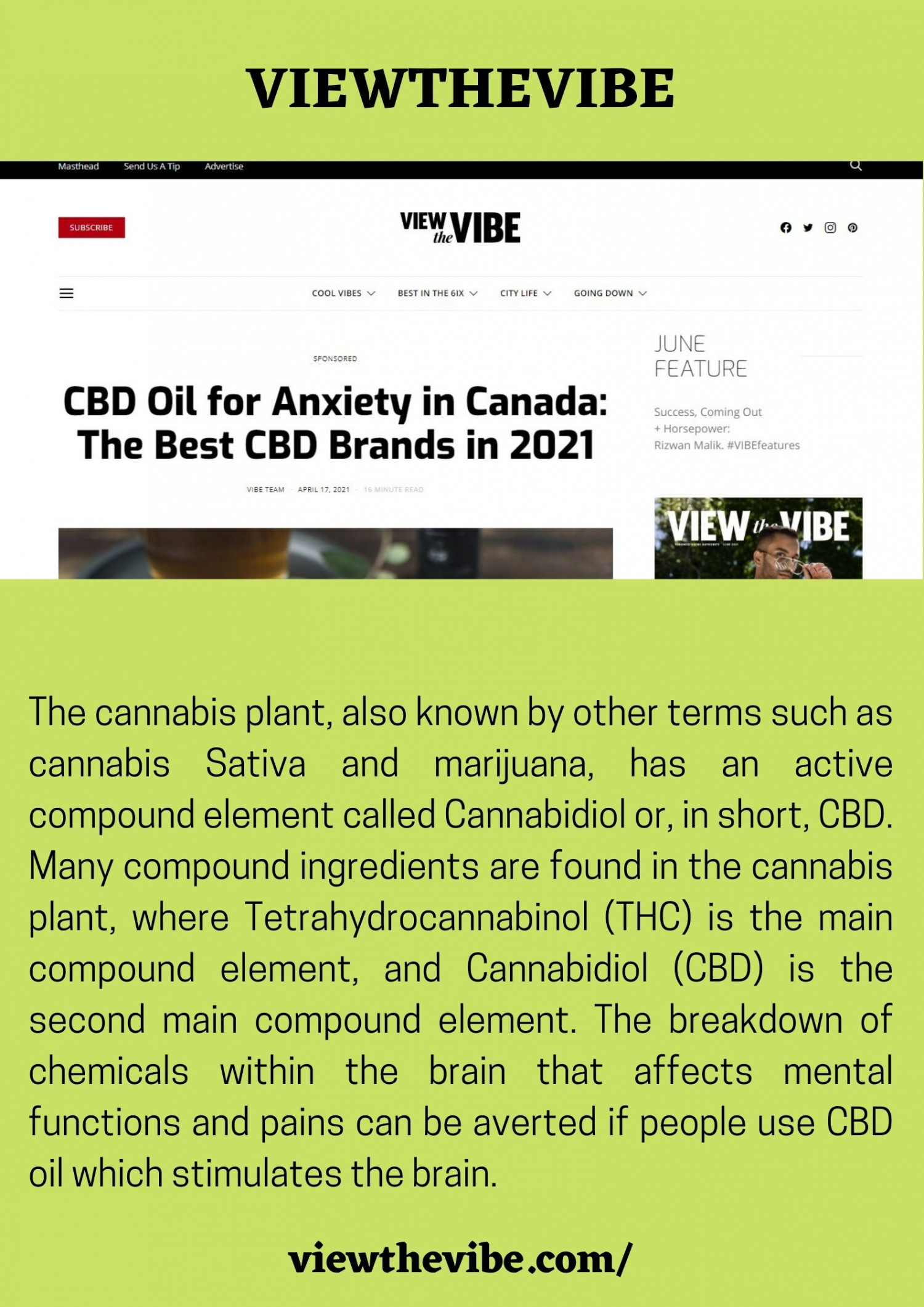 CBD oil for anxiety Canada Infographic