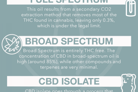 CBD Products to Look For Infographic