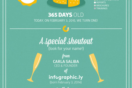 Celebrating one Year Infographic