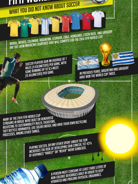 Celebrating the 2014 FIFA World Cup: What you Did Not Know about Soccer Infographic