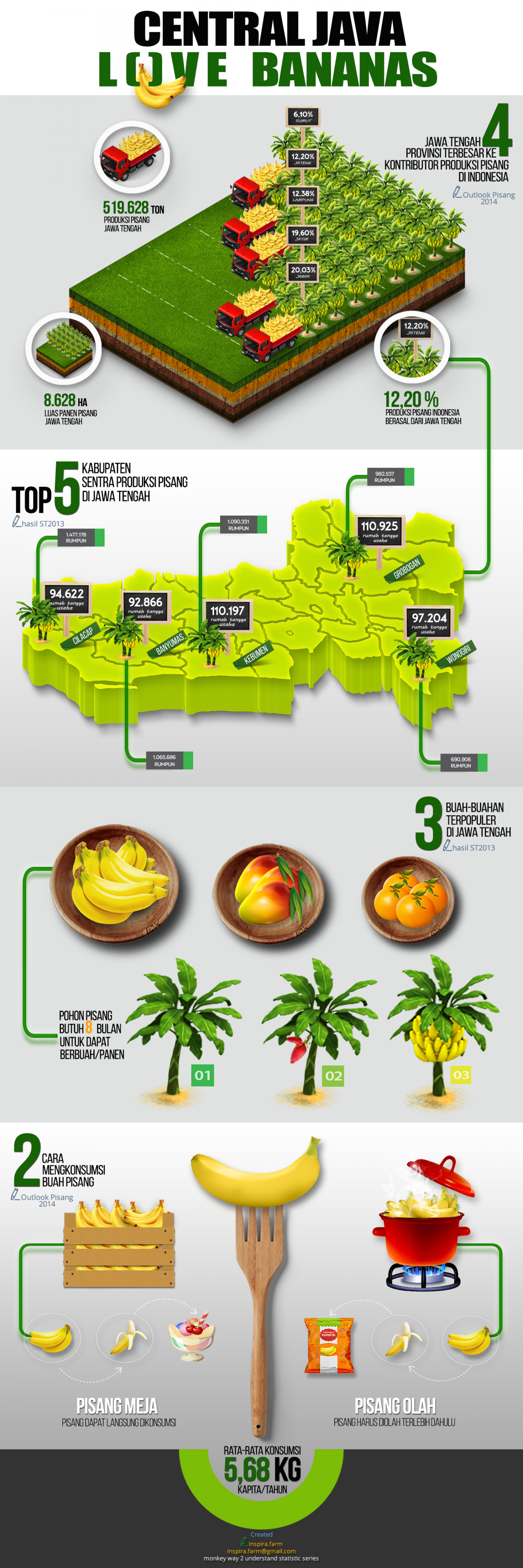 CENTRAL JAVA LOVE BANANAS Infographic
