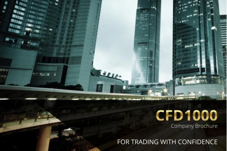 CFD1000 Company Profile Infographic