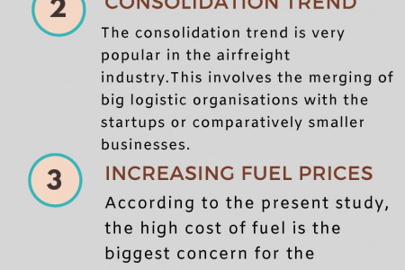 Challenges of Air Freight Industry Infographic