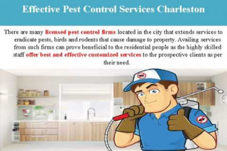 Charleston Pest Control- Rid Your Home Of Unwanted Pests! Infographic