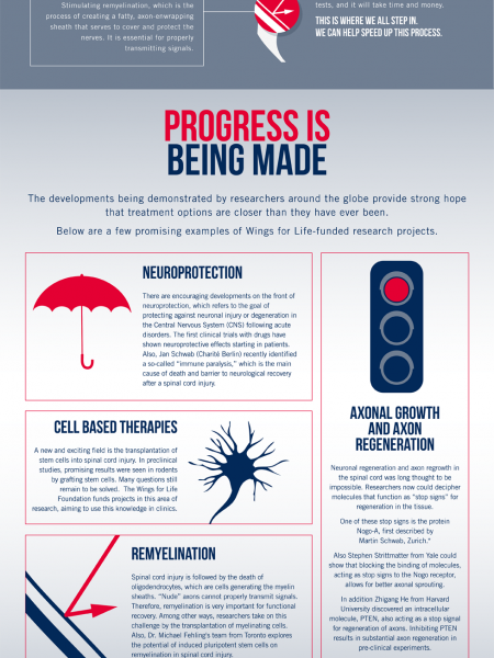 Chasing A Cure For Spinal Cord Injuries Infographic