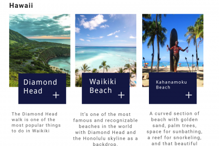 Cheap Flights to Honolulu Infographic