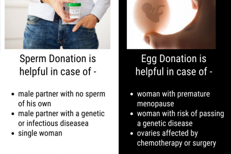 Check out the Donor Program at CheQKmate - Best IVF center Pune Infographic