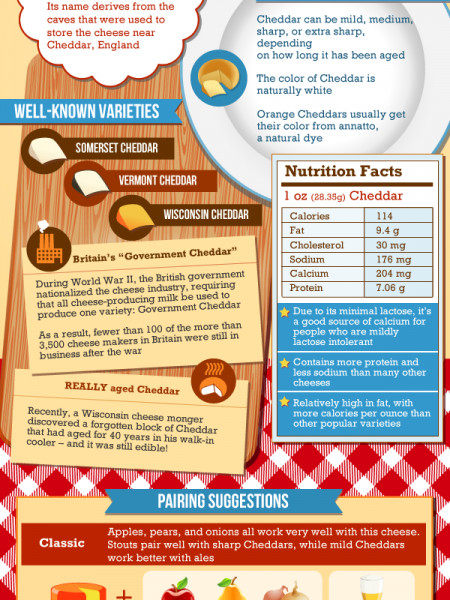 Cheddar An American Favorite Infographic