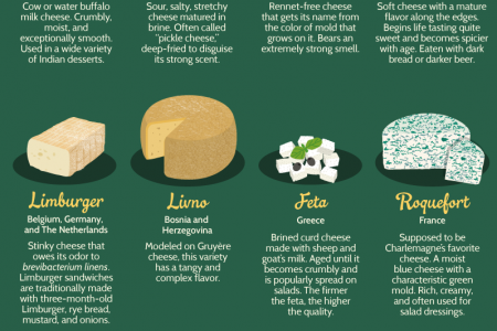 Cheese, Please! 51 Tasty Cheeses From Around the Globe Infographic