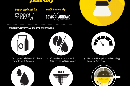 Chemex Brewing Infographic
