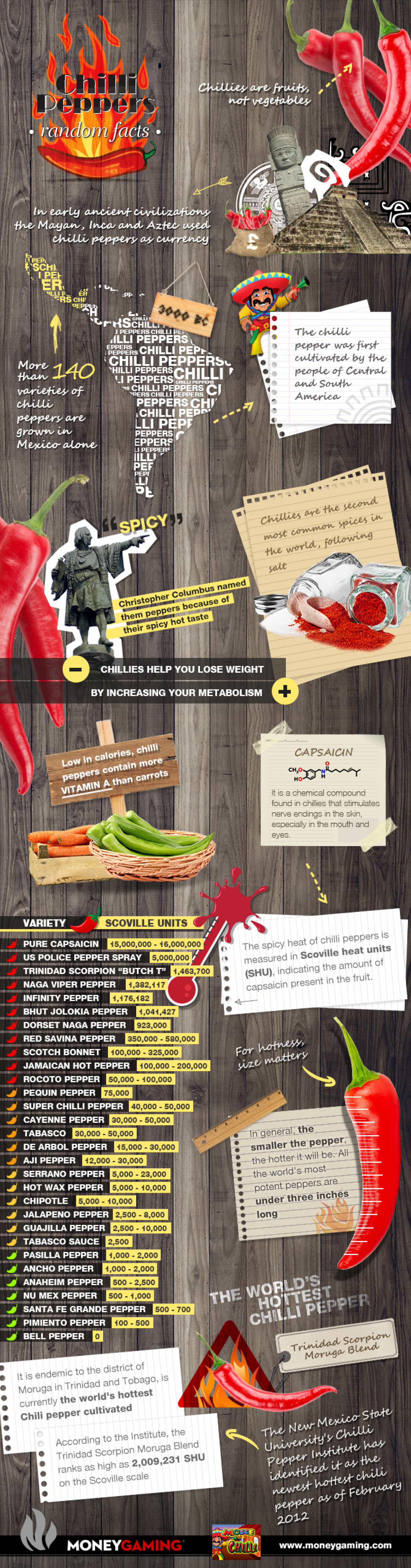 Chilli Peppers: Random Facts Infographic