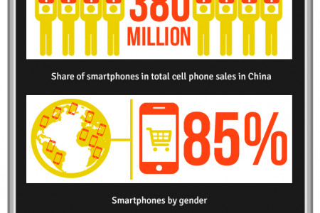 Chinese Smartphone Facts Infographic