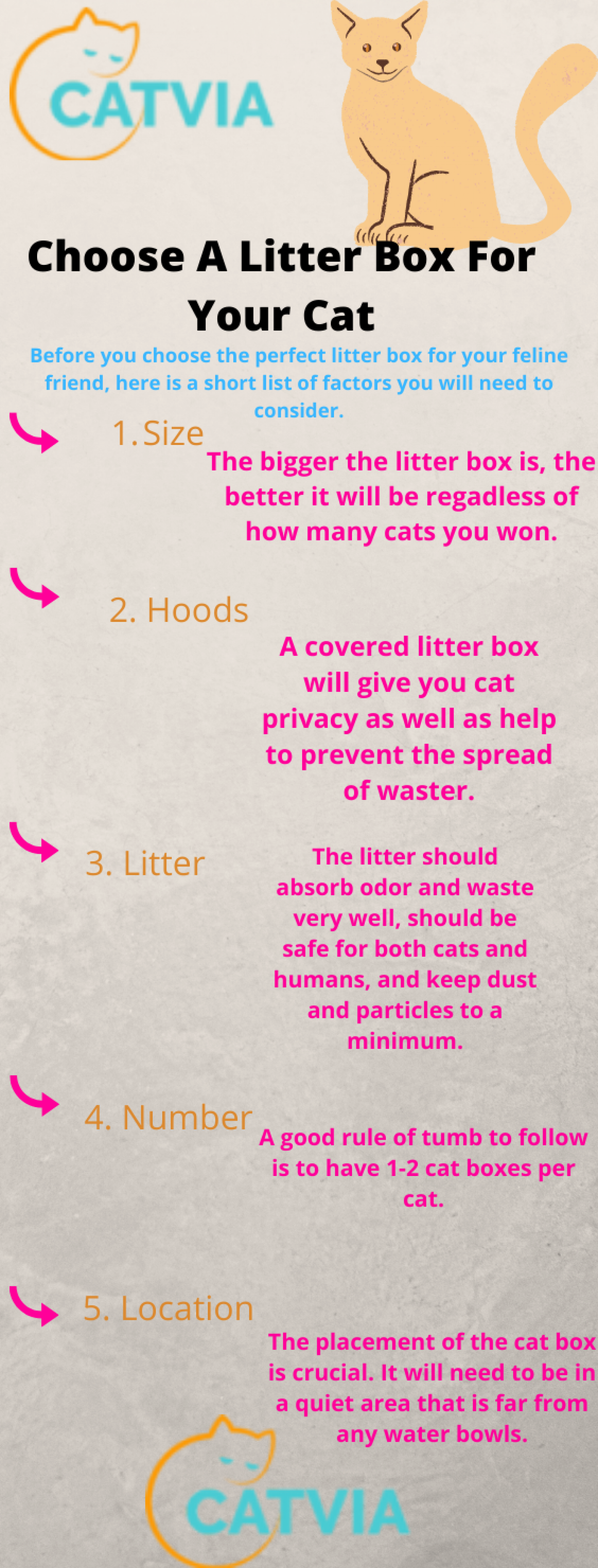 Choose A Litter Box For Your Cat Infographic