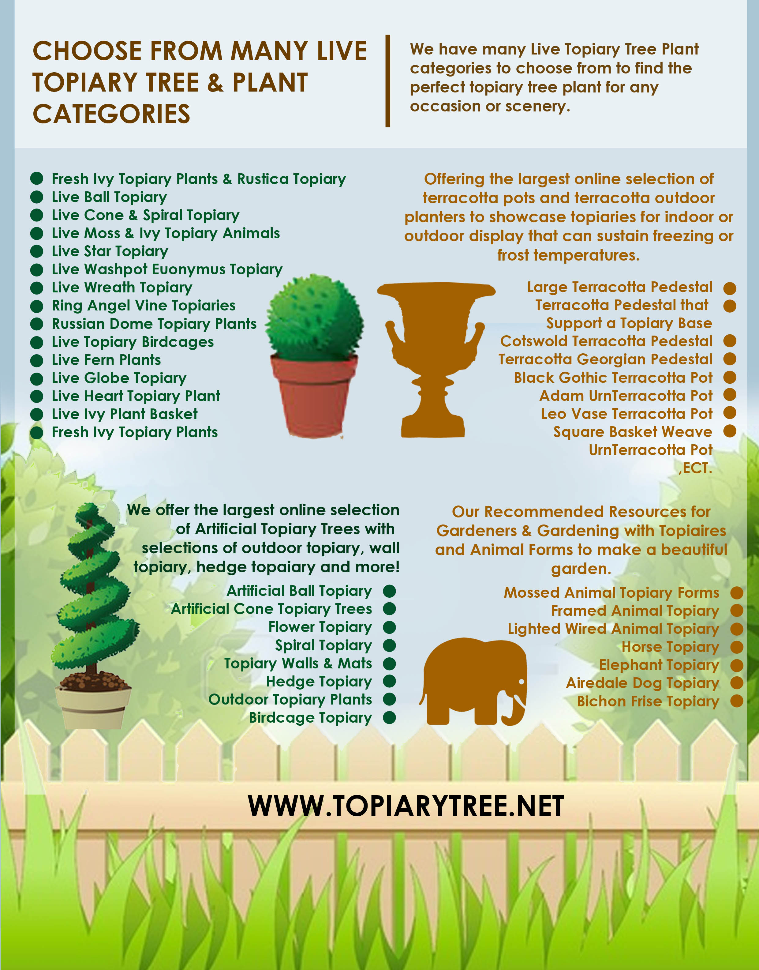 Choose From Many Live Topiary Tree Plant Categories Visual Ly