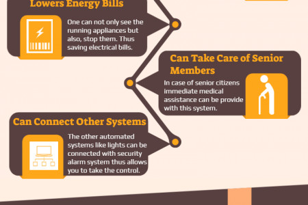 Choose The Best Home Alarm System Infographic