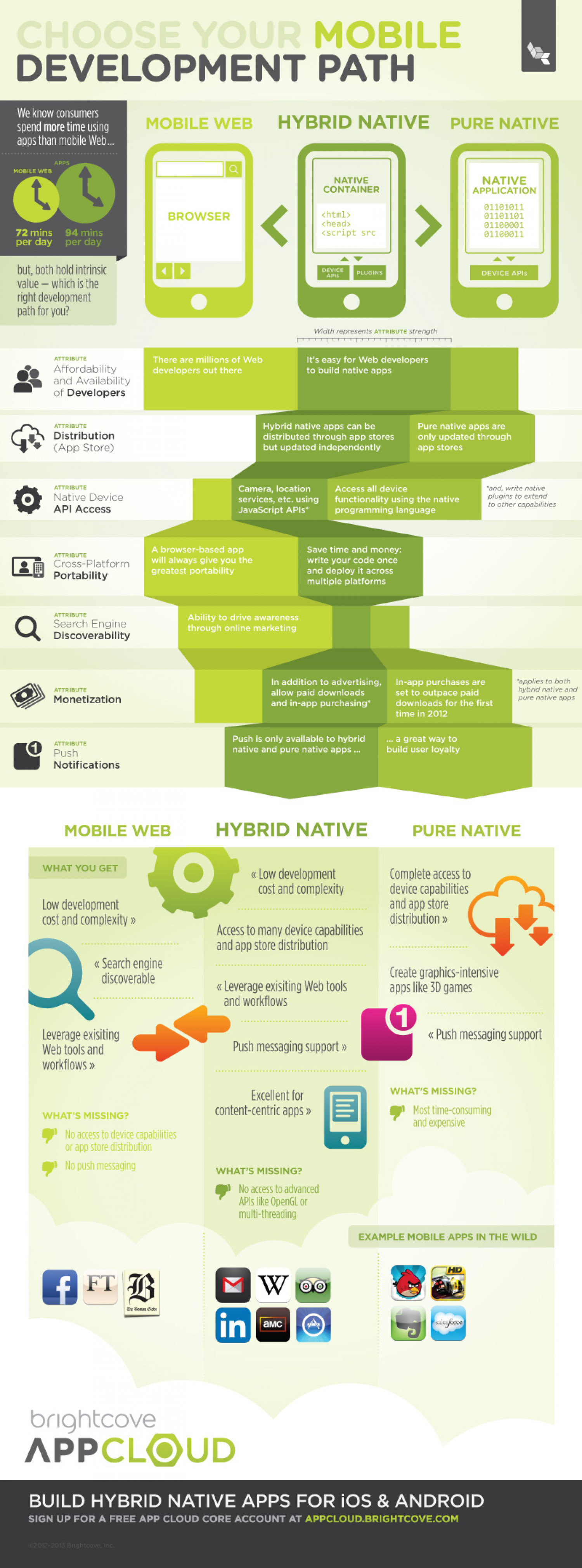 Choose Your Mobile Development Path Infographic