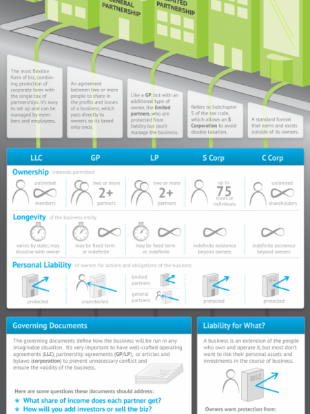 Choosing Ownership Structure for Your Startup Infographic