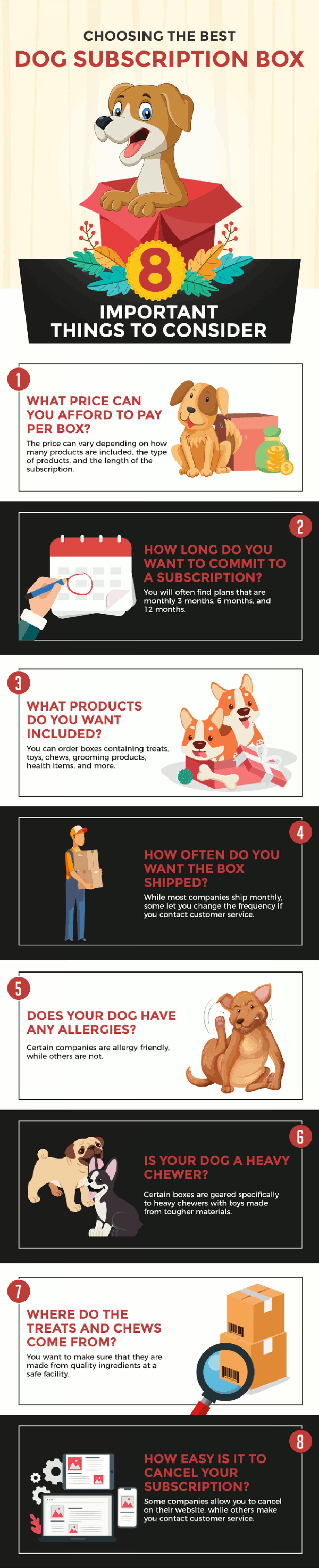 Choosing the Best Dog Subscription Box: 8 Important Things to Consider Infographic