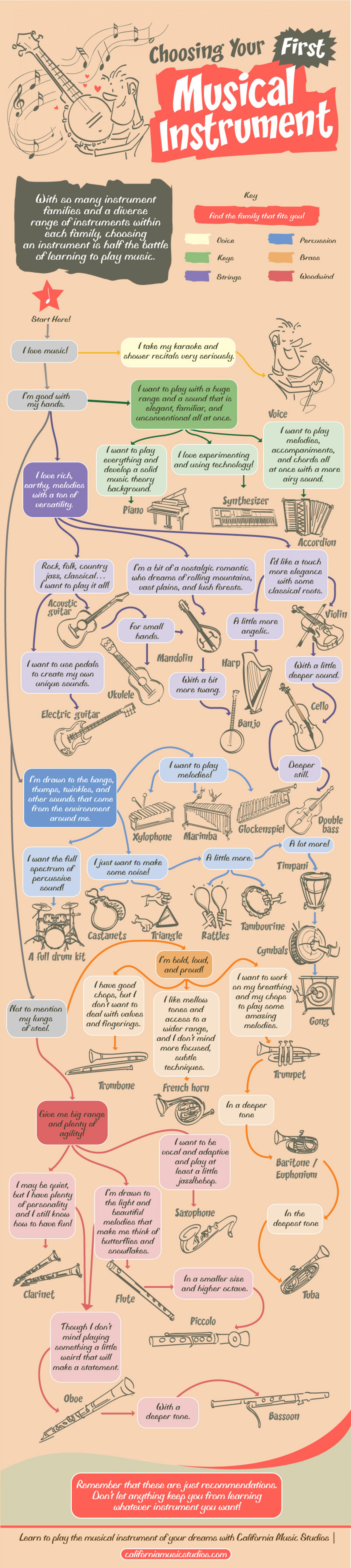 Choosing Your First Musical Instrument Infographic