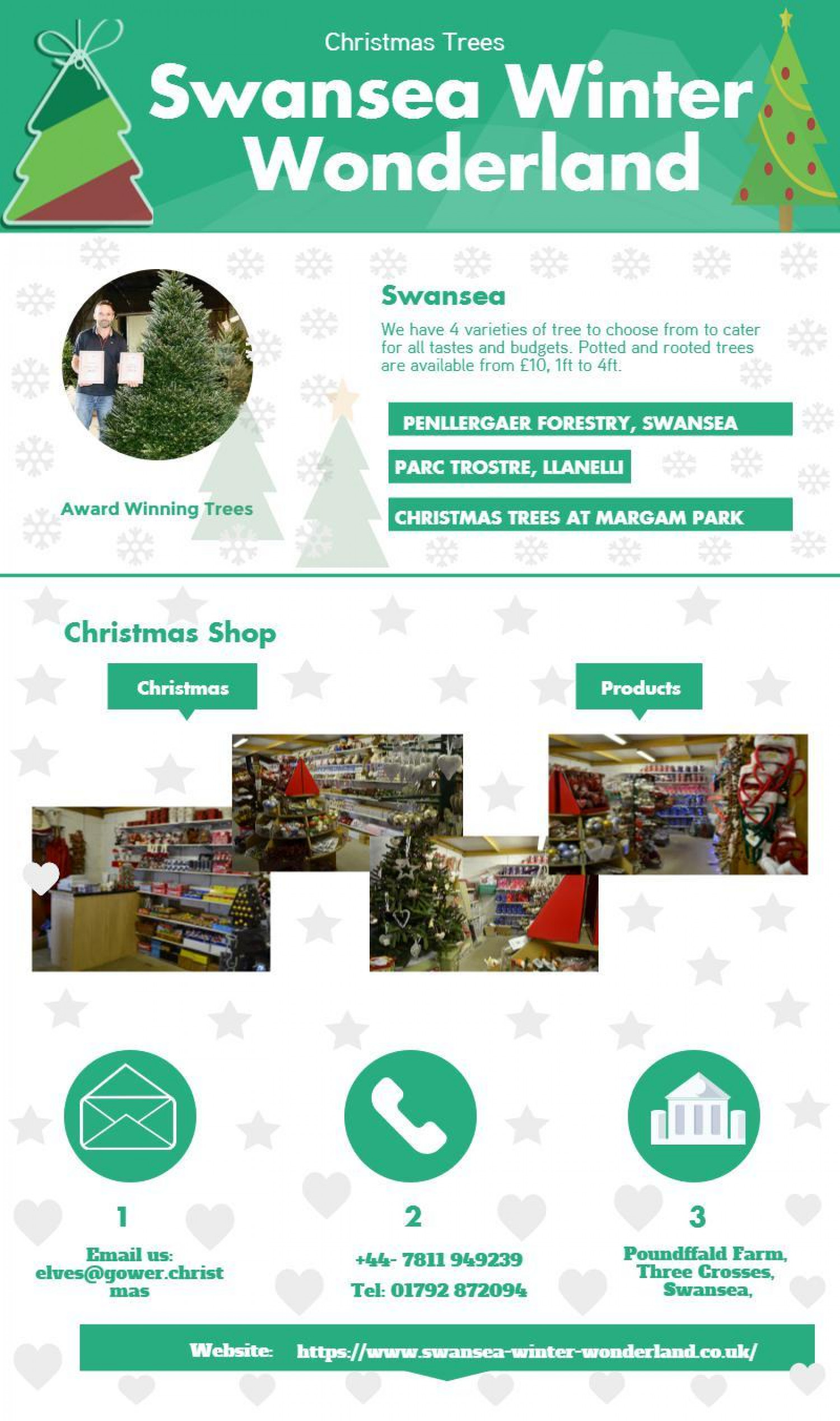 Christmas Gifts services from Swansea Winter Wonderland Infographic