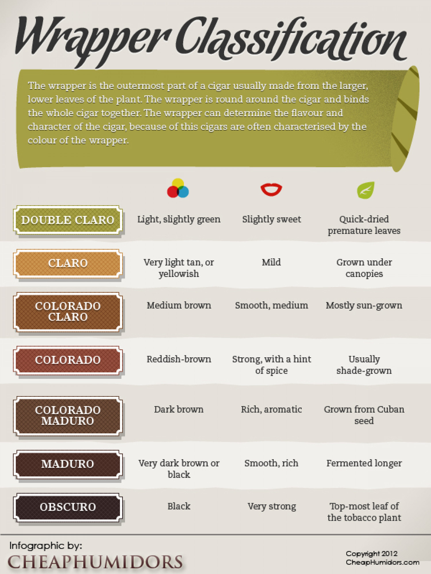 Cigar Wrapper Types Infographic