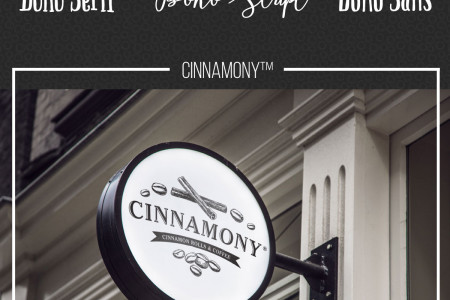 Cinnamony Brand Concept by Maxwell Alexander Infographic