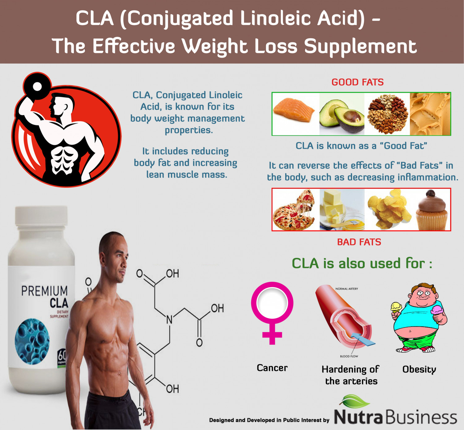 Cla Conjugated Linoleic Acid All About It Visual Ly