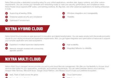 Cloud Hosting Services - Nxtra Data Infographic