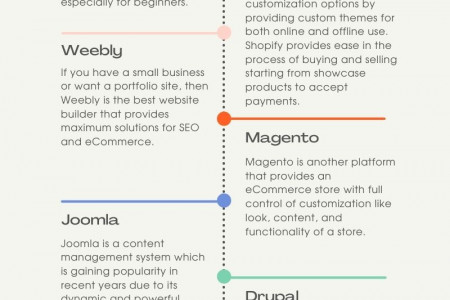 CMS & ECommerce Store Infographic