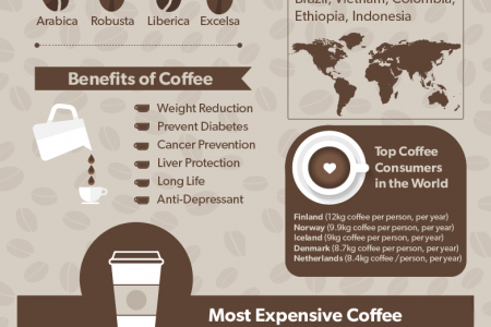 Coffee Beans: Types & Health Benefits Infographic