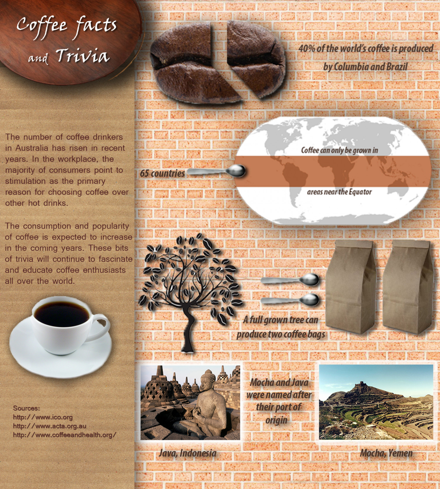 Coffee Facts and Trivia Infographic