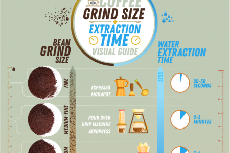 Coffee grind size chart + coffee extraction time Infographic - TheStoryofCoffee Infographic