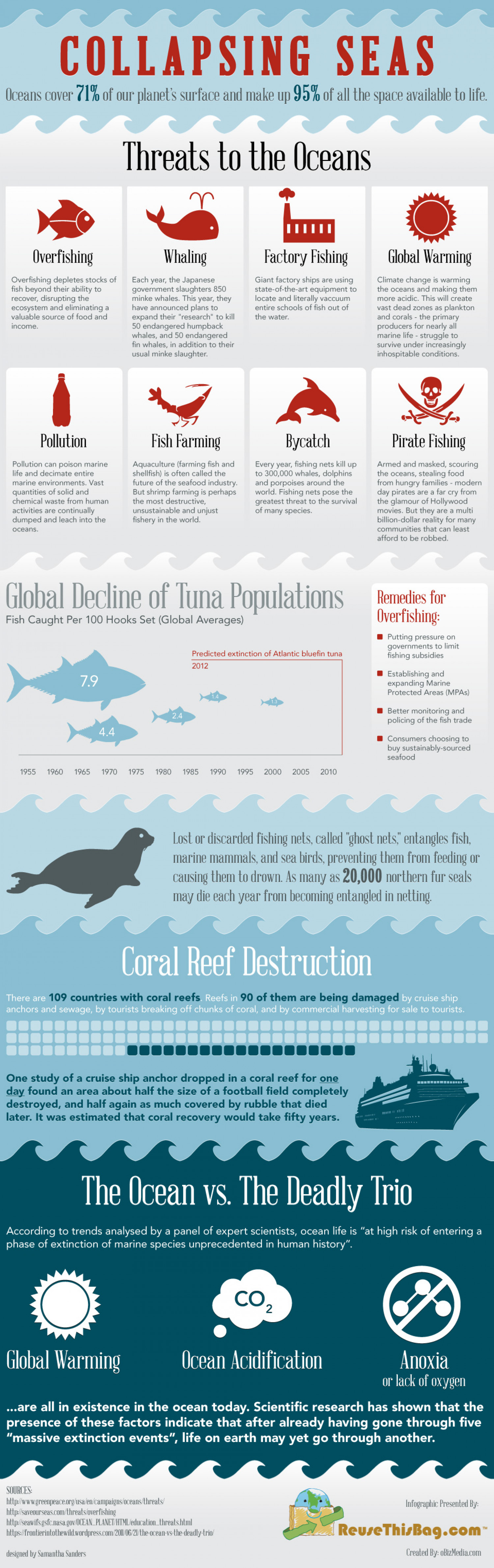 Collapsing Seas  Infographic