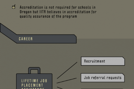 Commercial Driver's License: Options and Opportunity  Infographic