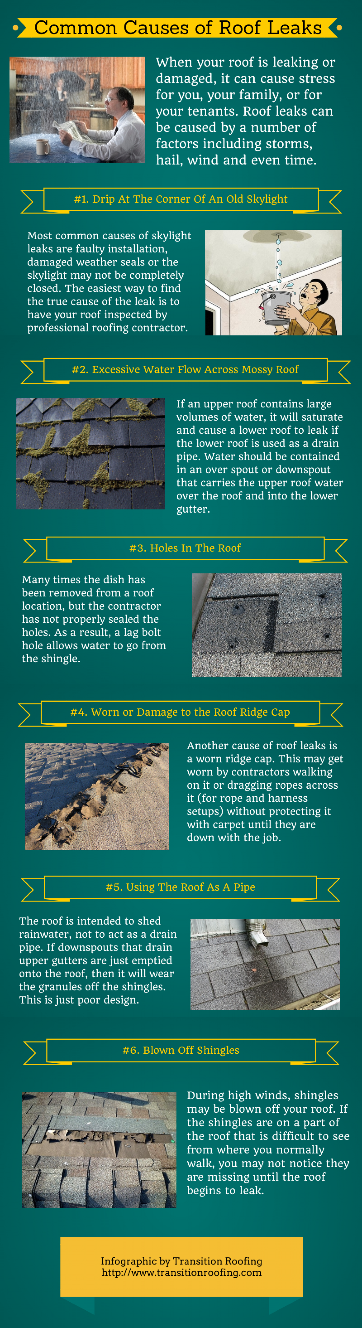 Common Causes of Roof Leaks Infographic
